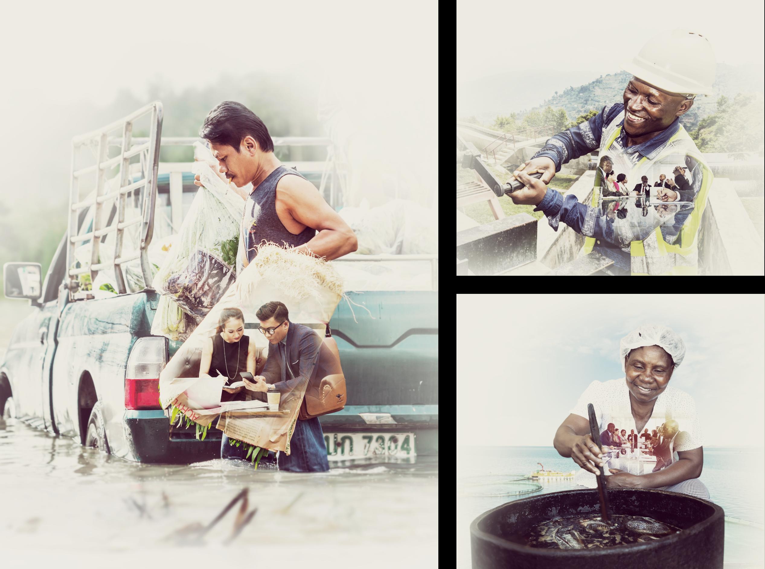 FMO collage image